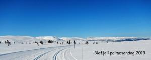 Blefjell-palmesondag-2013-1