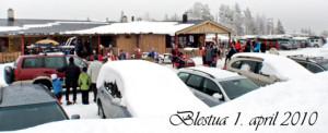 Blesua-0104-2010
