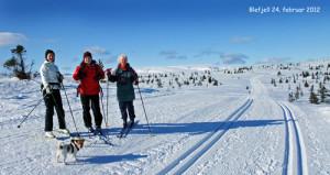 Skitur-2402-2012-web